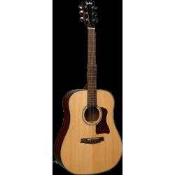 JIM HARLEY Guitare...