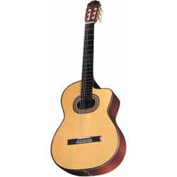 Takamine TH90 natural gloss