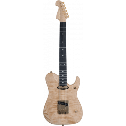 Washburn Nuno Bettencourt...