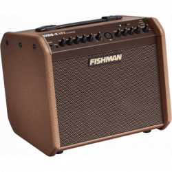 Fishman 60W sur batterie