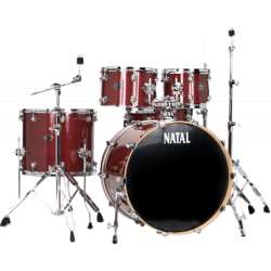"""NATAL Arcadia US Fusion 22""""..."""